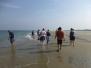 Festival aan Zee 2013